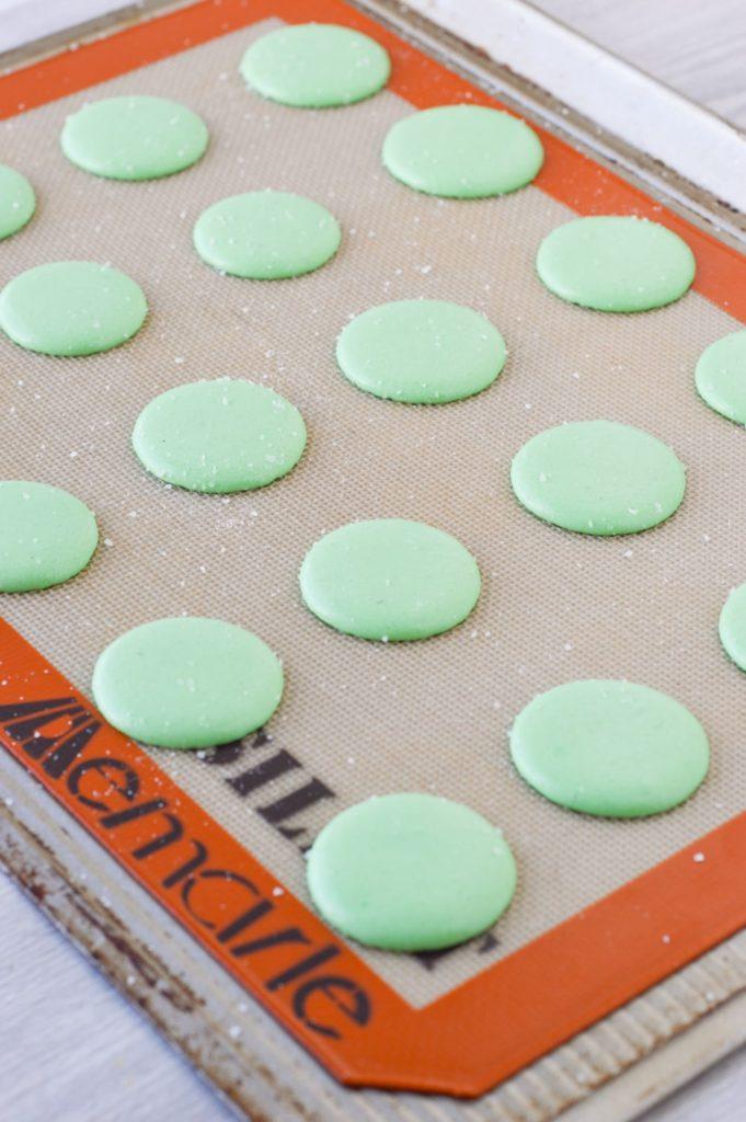 margarita macaron shells unbaked