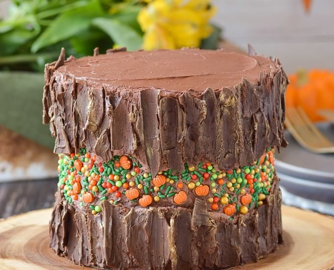 fall themed fault line cake