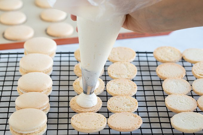 piping buttercream on french macaron shells
